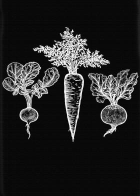 Veggies Displate