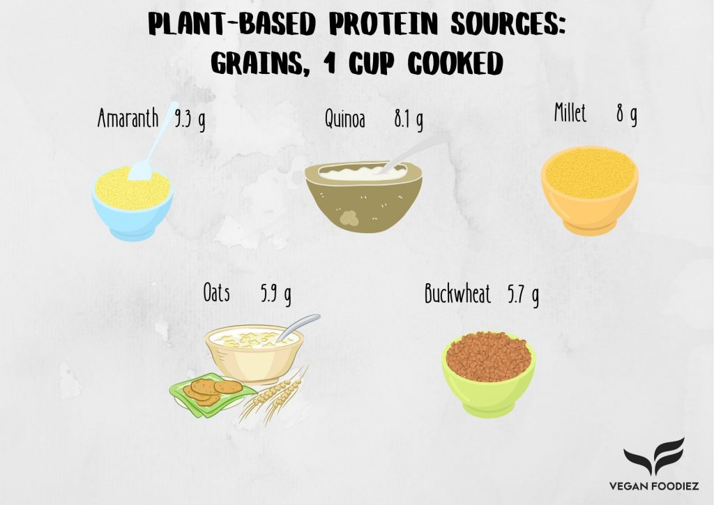 Plant-Based Protein Sources: Grains