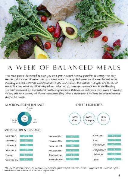 Balanced Vegan 7-Day Meal Plan